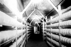 Cheese aging in Wabasha Street Caves circa 1940 (MHS)